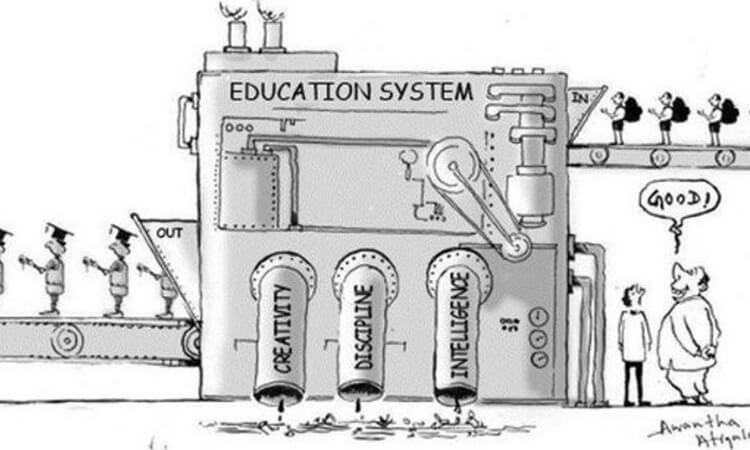 Школа — это фабрика, которая «отбраковывает» уникальных детей
